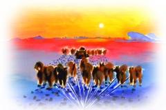 Siorapaluk : illustrations de Marie Fardet