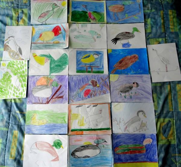 dessin oiseaux