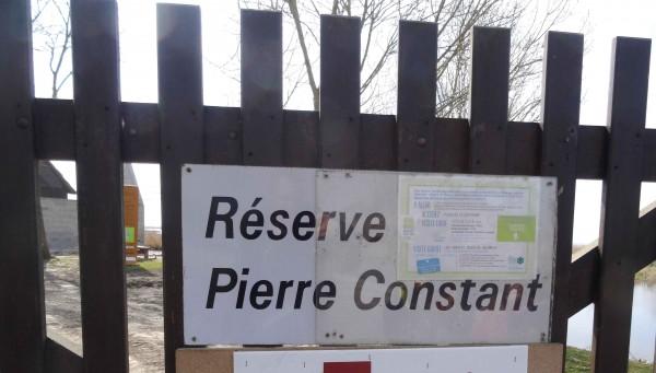 reserve pierre