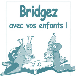 Cm1 et Cm2 : Initiation bridge